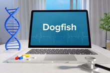 Dogfish– Medicine/health. Co.