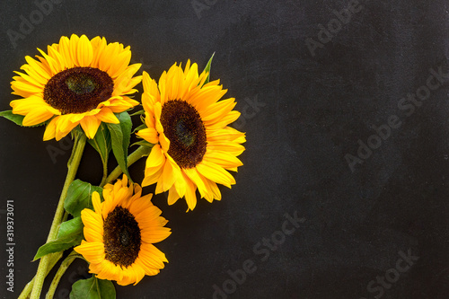 Fototapeta Bouquet of sunflowers on black background top-down copy space