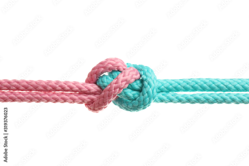 Fototapeta Colorful ropes tied together with knot isolated on white. Unity concept