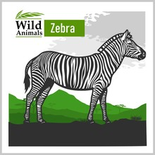 African Landscape With Zebra -...
