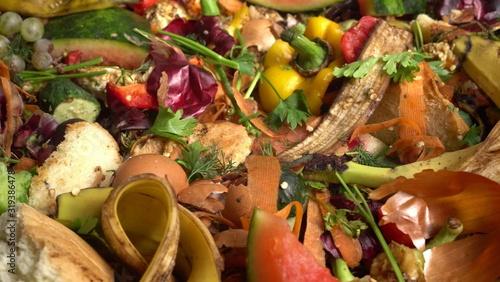 Food Waste and Kitchen Scraps Canvas Print