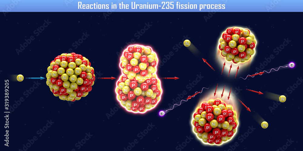 Fototapeta Reactions in the Uranium-235 fission process (3d illustration)