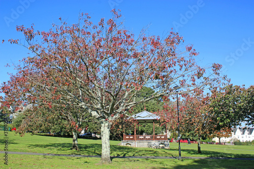 Photo Bandstand in a park in Autumn