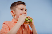 Little Boy Eats A Burger. Fast...