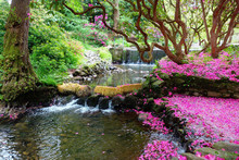 Beautiful British Landscaped Gardens With The Bridge Over The Lake And Blossoming Shrubs, Selective Focus