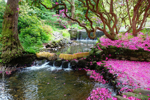 Beautiful british landscaped gardens with the bridge over the lake and blossomin Fototapete