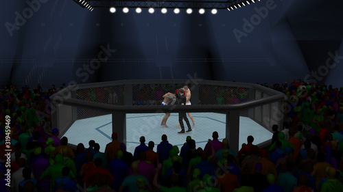 Cage fighting distant view 3d render Wallpaper Mural