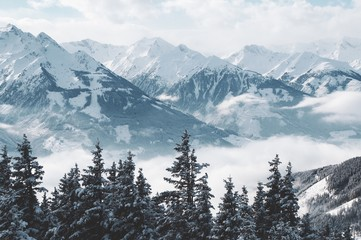 Obraz na Szkle Góry Beautiful shot of mountains and trees covered in snow and fog