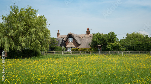 A traditional English thatched roof cottage nestling amongst trees with a meadow filled with wild flowers in the foreground.