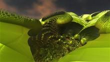 Fractal Green Plant