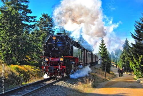 Obraz na plátně Steam locomotive on the way to the Blocksberg (Brocken)