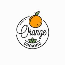 Orange Fruit Logo. Round Linear Logo Of Orange