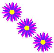 Three Bright Flowers Isolated ...