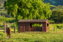 Horse Ranch In The Country In ...