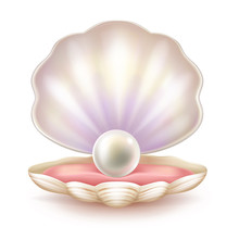 Precious Pearl In Opened Shell...
