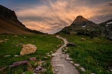 Trail Cuts Through Logan Pass