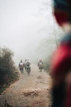 Foggy Walk  In Vietnam