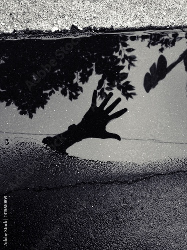 Photo High Angle View Of Hand And Tree Reflection In Puddle On Street