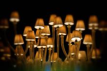 Close-Up Of Lamp Chandelier In Darkroom