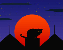 The Silhouette Of A Cat On The...