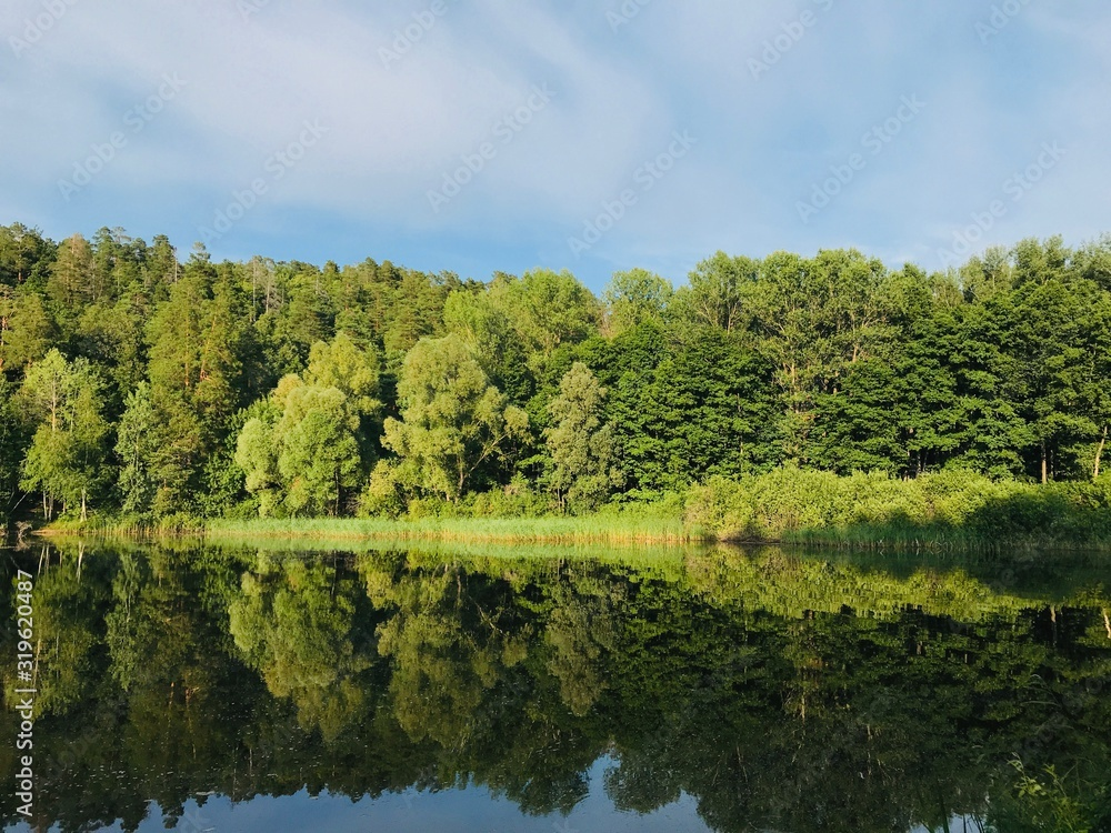 Fototapeta SCENIC VIEW OF LAKE BY TREES AGAINST SKY - obraz na płótnie