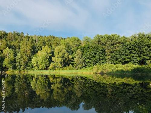 Fototapeta SCENIC VIEW OF LAKE BY TREES AGAINST SKY obraz na płótnie