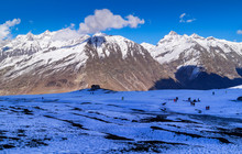 Rohtang Pass And Mighty Snow C...