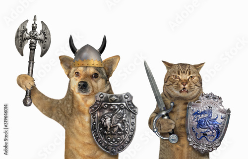 The dog and the cat are armed with shields with a dragon, helmets, an inlaid sword and a two sided axe Fototapeta