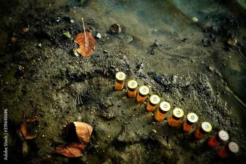 Obraz na plátně High Angle View of Shotgun Shells At Beach