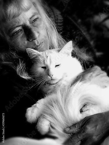 Fototapety, obrazy: CLOSE-UP PORTRAIT OF KITTEN