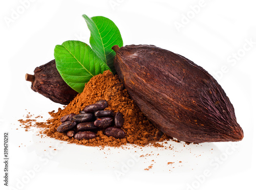 Fototapeta Cocoa pods, cocoa beans and cacao powder with leaves isolated on a white background. obraz