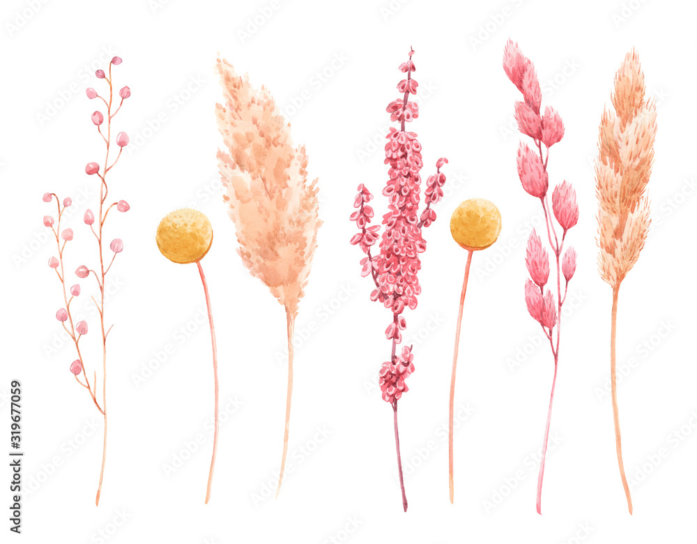 Fototapeta Beautiful bouquet composition with watercolor herbarium wild dried grass in pink and yellow colors. Stock illustration.