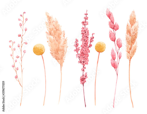 Fototapeta Beautiful bouquet composition with watercolor herbarium wild dried grass in pink and yellow colors. Stock illustration. obraz