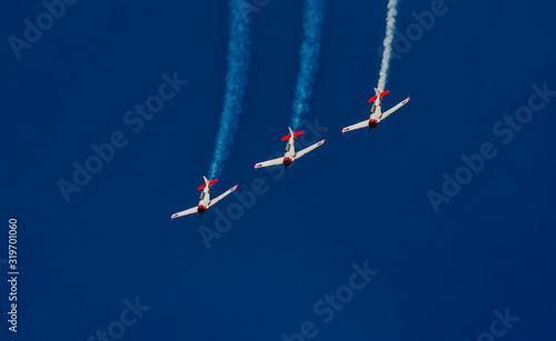 acrobat planes Canvas Print