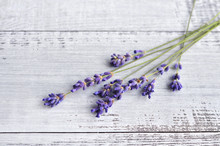 Bunch Of Fresh Natural Lavender Flowers On Old Rustic Wooden Table