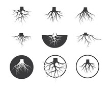 Tree Roots Vector Icon Illustr...
