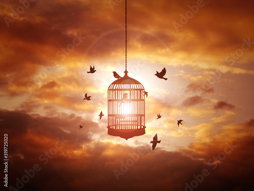 Tablou Canvas Cage amidst birds against cloudy orange sky during sunset