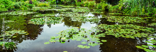 Photo Claude Monet's water garden in Giverny, France