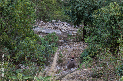 Fotografie, Tablou A goatherd watching his herd passing on a trail in Rishikesh, India