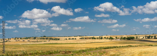 Photo Rural landscape in Apulia at summer