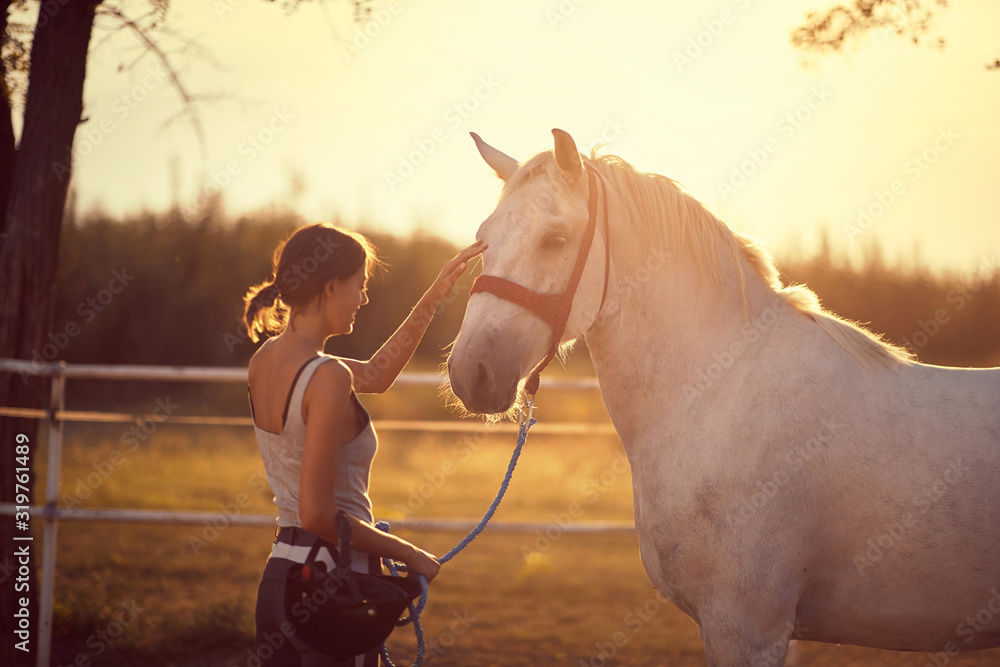 Fototapeta Horse getting pets by girl rider.  Fun on countryside, sunset golden hour. Freedom nature concept.