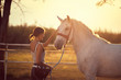 Horse getting pets by girl rider.  Fun on countryside, sunset golden hour. Freedom nature concept.