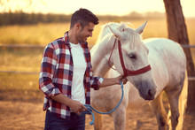 Handsome Smiling Man Leading His White Horse . Fun On Countryside, Sunset Golden Hour. Freedom Nature Concept.