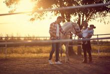 Horse Enjoying The Family Pres...