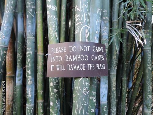 Tela Warning Sign On Bamboos