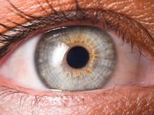 Human Eye Close Up Detail