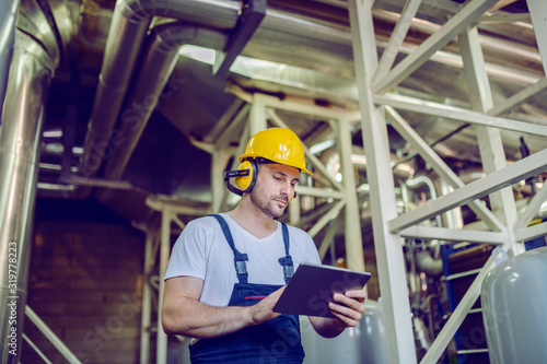 Fototapeta Serious caucasian worker in overalls, with hardhat on head and antiphons using tablet while standing in factory. obraz