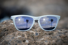 Palms  Reflected In The Lenses...