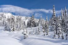 Mountain Snow At Mount Rainier National Park