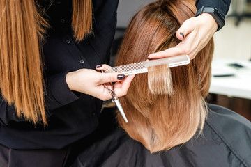 Hairdresser is cutting woman hair in hair salon, close up, rear view.